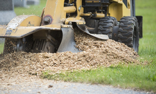 Stump Grinding Operation