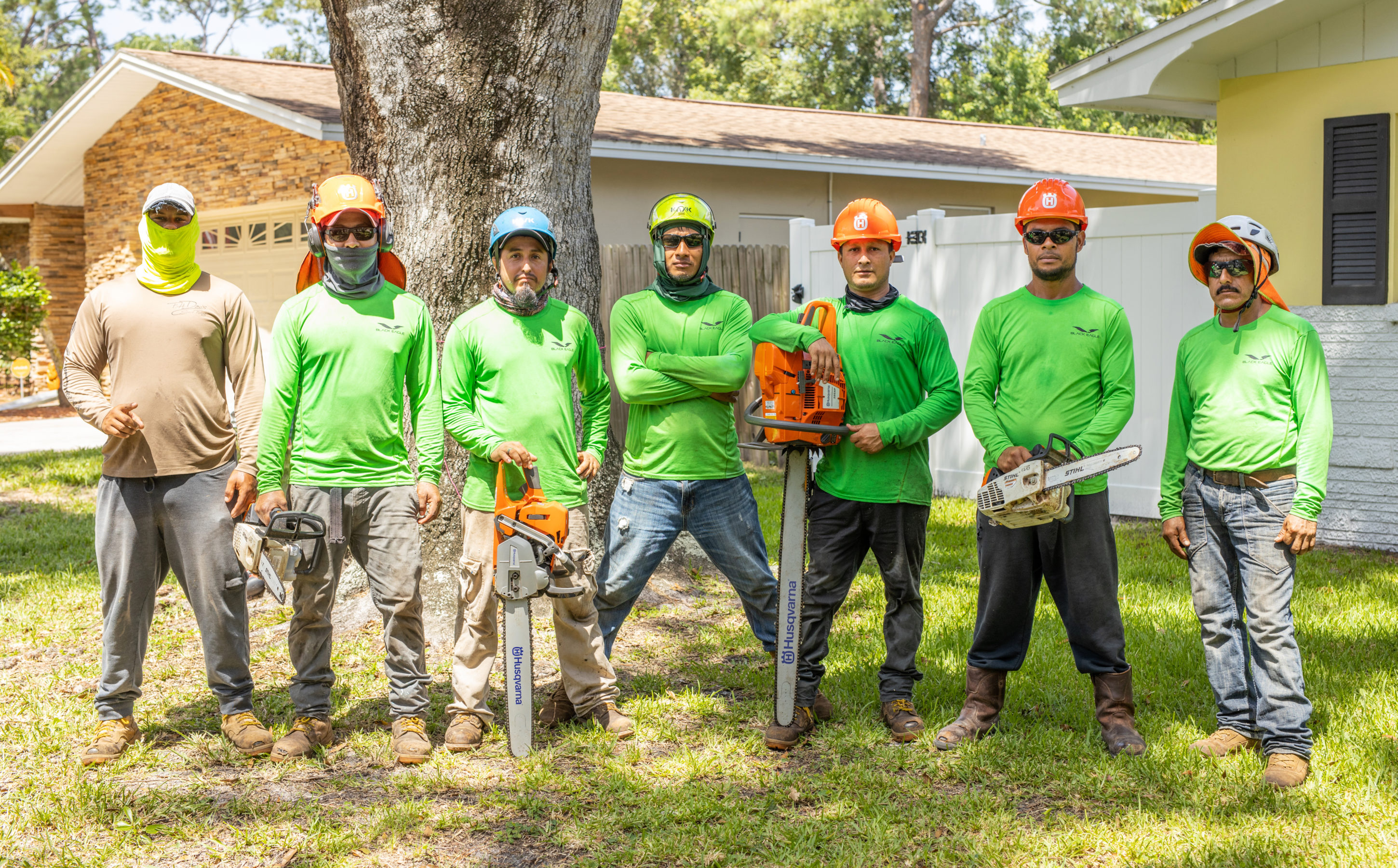 Our crew performing tree service in Pinellas County